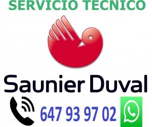SERVICO TECNICO SAUNIER DUVAL PONTEVEDRA
