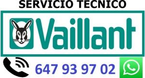 SERVIVIO TECNICO VAILLNT PONTEVEDRA